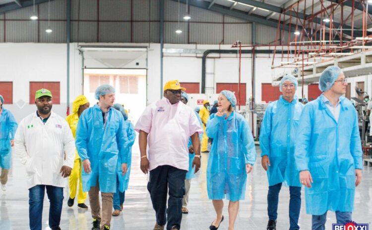 German Development Bank, KFW-DEG Visits Beloxxi Agbara Factory